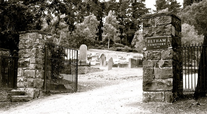 The Eltham Cemetery – 'A Currawong Takes Flight'